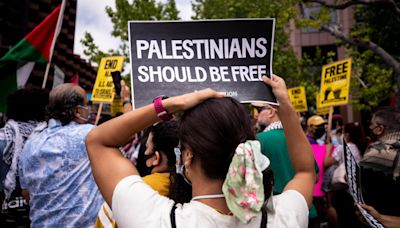'It's different this time': Palestinian Americans find support in US progressives