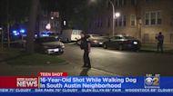 16-Year-Old Boy Shot While Walking Dog In South Austin