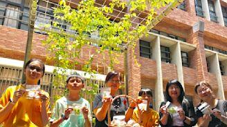 竹市推綠屋頂改造 今年補助創新高