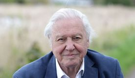 Sir David Attenborough teams with Hans Zimmer and rapper Dave for Planet Earth special