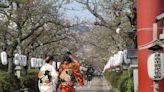 鎌倉完整指南!網羅交通美食活動盛事以及各景點不藏私全部公開!