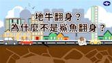「地牛翻身」有典故!氣象局:日本用鯰魚、北美講烏龜