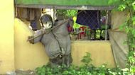 Cambodian uses scarecrows to 'ward off' COVID