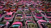 不載乘客改種菜 泰國「計程車菜園」與車行們的求生之路   DQ 地球圖輯隊