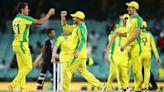 Australia v India: Steve Smith guides Australia to series victory as David Warner injury dampens celebrations