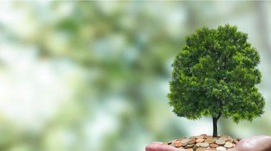 種碳也可以賺錢?環保意識下的農業新「錢」景