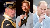 Prince William, Prince Charles are 'shaken up' and 'nervous' about Prince Harry's upcoming memoir, source says
