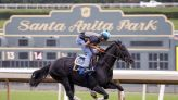Santa Anita is not for sale, TSG executive says amid speculation