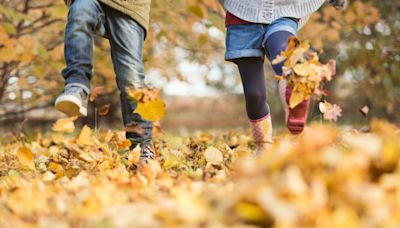 Autumn Equinox 2020: the science behind the changing seasons