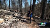Caldor Fire: More evacuation orders downgraded ahead of Biden visit