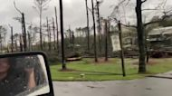 Motorist Surveys Downed Trees Following Tornado in Birmingham, Alabama