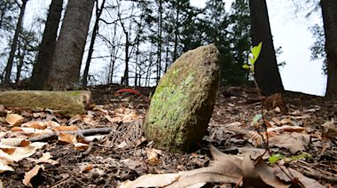 Clemson University has found 604 unmarked graves on its South Carolina campus. But who were they?