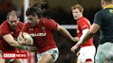 Wales rugby: Amazon and S4C agree deal over match highlights