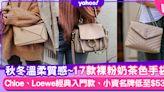 名牌手袋|秋冬保值奶茶色手袋17款!入門款Loewe Puzzle、Celine Bucket高質感手袋