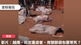【錯誤】網傳影片稱「在越南、印尼已重症者,醫療單位不做治療,直接將重症者脫光裝在塑膠袋內等死,太殘忍了」?