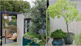 Inside all the small balcony and container gardens at the RHS Chelsea Flower Show 2021