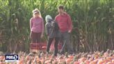 Emerging from pandemic, California pumpkin farmers now dealing with drought