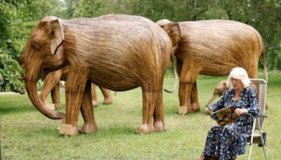 Camilla, Duchess of Cornwall Reads Aloud to Schoolchildren–and a Herd of Elephant Sculptures