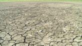 缺水!56年最慘現況 找水.節水總動員