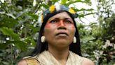 Nemonte Nenquimo: The indigenous leader named 'environmental hero'