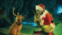 16 Things You Didn't Know About How the Grinch Stole Christmas