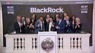 Wall Street plunges as Treasury yields climb