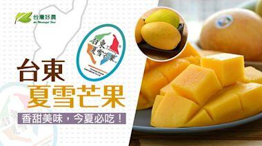 不受疫情影響 縣府推廣農產超前部署「芒果界LV」台東夏雪芒果外銷亮眼 銷量上看10公噸