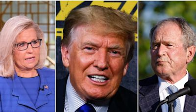 Donald Trump mocks his Republican foes by sending a bizarre meme of Liz Cheney and George W. Bush's faces morphed together