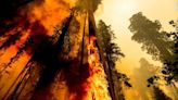 Firefighters in California face critical fire threat as they work to contain several large blazes