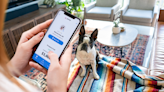 Care for your pet with a digital clinic membership