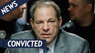 Harvey Weinstein and Georgina Chapman Finalize Divorce: Details
