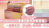 口罩品牌Protector全新春日色系$5/片 一盒有齊5色:奶油黃、鼠尾綠、日出紅|SundayMore