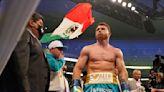 Canelo Alvarez Tweets Facepalm Emoji After Floyd Mayweather Jr. vs. Logan Paul Fight