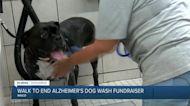 Alzheimer's Association hosts fundraiser to raise proceeds for Walk to end Alzheimer's