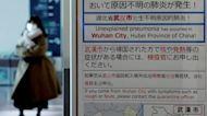 WHO: Chinese coronavirus 'not yet' a global emergency