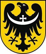 Henry VII of Brzeg