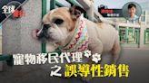 全球樓行.專欄︱寵物移民代理之誤導性銷售(陳臻瑋) | 蘋果日報