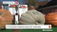 Humongous pumpkin weighed in at historic annual event