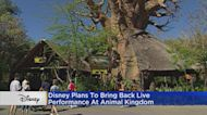 Live Entertainment Returning To Walt Disney World