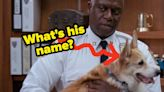 """Only Someone Whose Watched """"Brooklyn Nine-Nine"""" From Day One Can Pass This Trivia Quiz"""