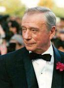 1987 Cannes Film Festival