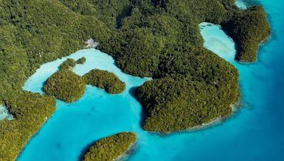 帛琉旅遊泡泡重啟!最詳細的Q&A一次整理給你看(持續更新)   蕃新聞
