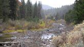 Climate change disrupting natural cycles at drier Lake Tahoe