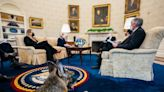 Presidential Pups! First Dogs Champ and Major Join President Joe Biden in the Oval Office