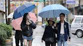 一周2波東北季風來襲 北台僅周四好天氣