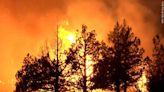 Fires, drought weakened 10K trees near giant sequoia groves - WBBJ TV
