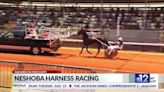 Focused on Mississippi: Harness racing at the Neshoba County Fair