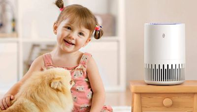 This top-rated air purifier is a must-have for allergy season - and it's on sale for $110