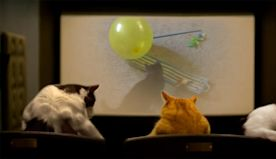 Quarantine Cat Film Fest Will Raise Money to Help Movie Theaters Closed Due to COVID-19