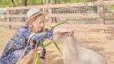 【全台懶人包】萌度破表的水豚集散地大公開 餵食+摸摸都可以!   美食旅遊   生活   NOWnews今日新聞